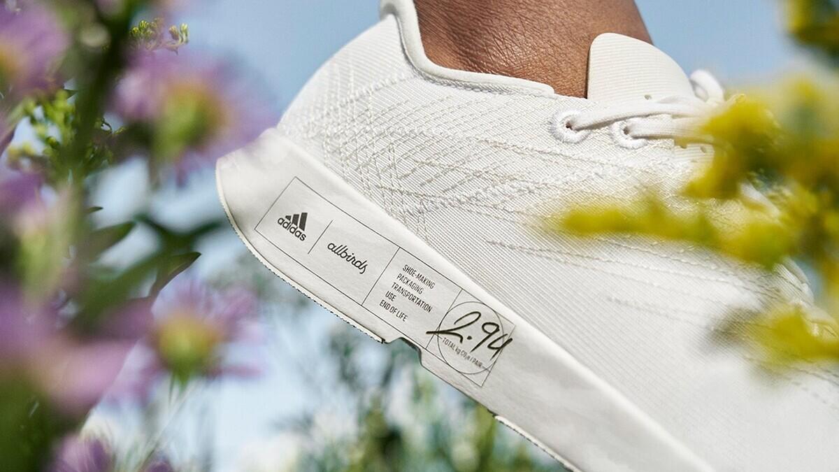 Adidas в сотрудничестве с Allbirds выпустят экологически чистые кроссовки