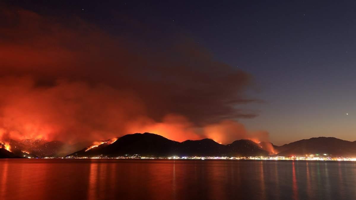 Лесные пожары в Турции: Эрдоган поблагодарил Зеленского за помощь