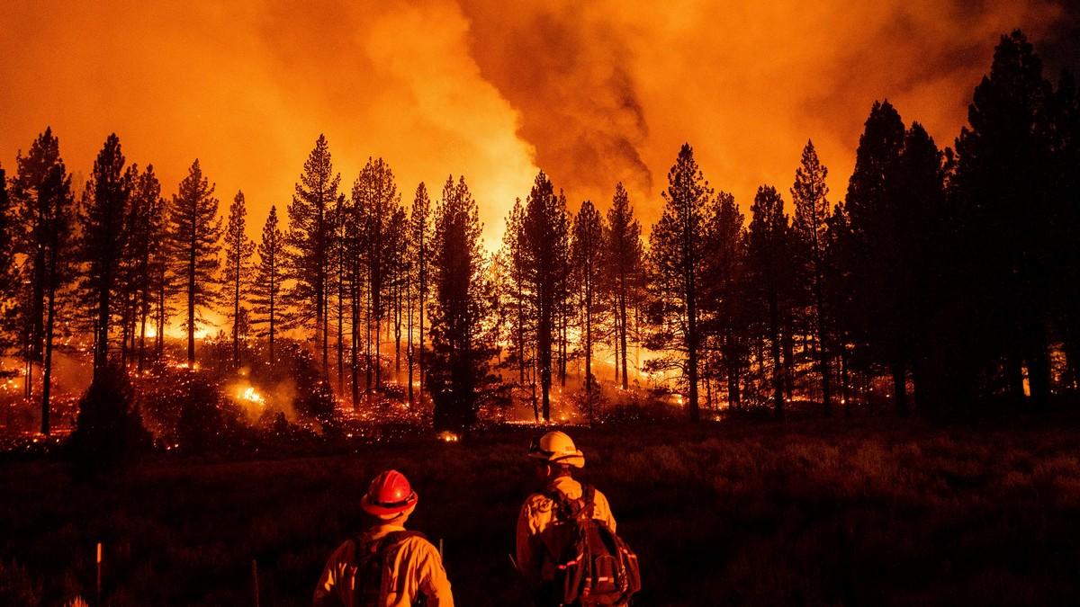 Синоптики объявили чрезвычайный уровень пожарной опасности в Украине