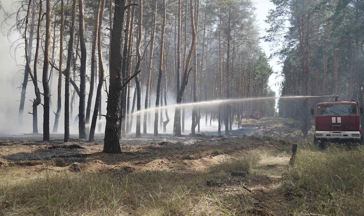 В Украине объявили чрезвычайный уровень пожарной опасности: какие области под угрозой