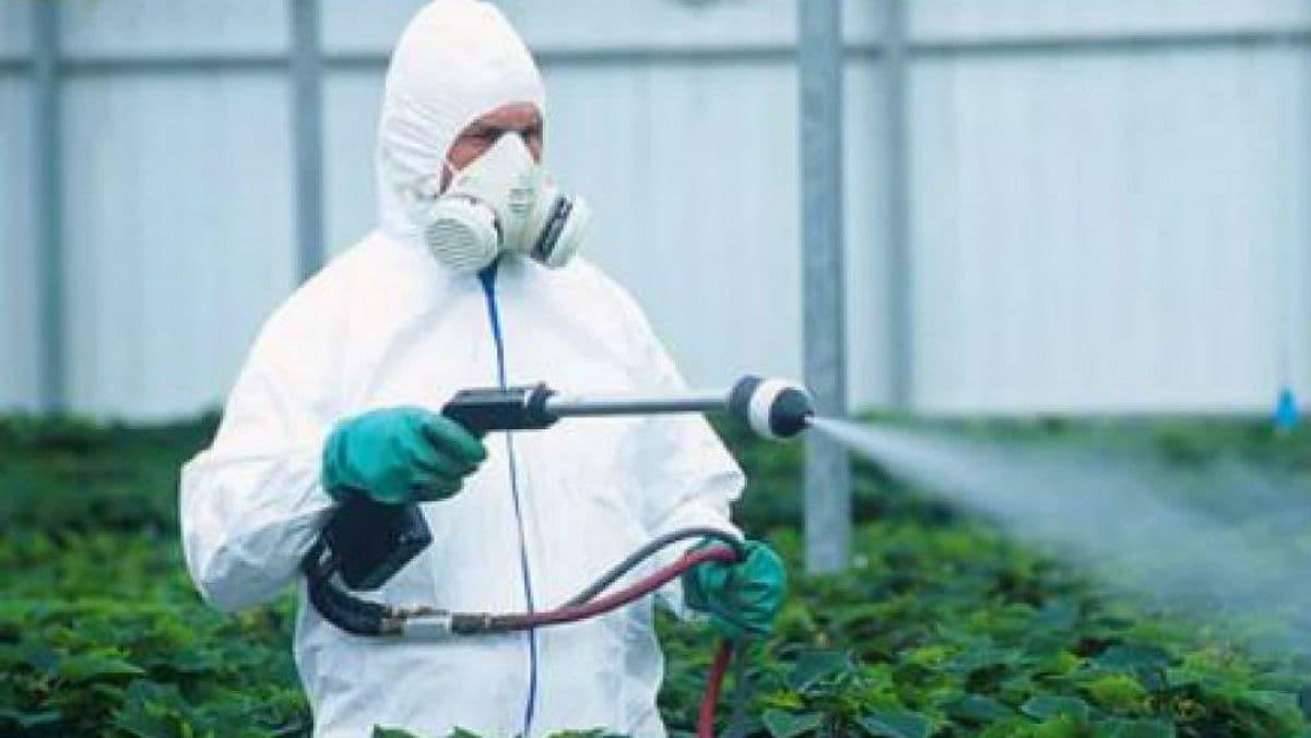 В Украине будут проверять использование пестицидов на предприятиях