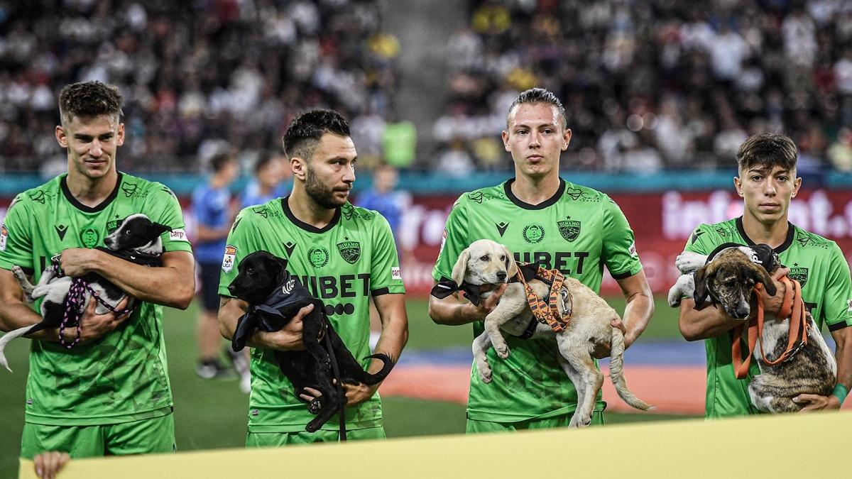 В Румынии футболисты вышли на поле с собаками на руках