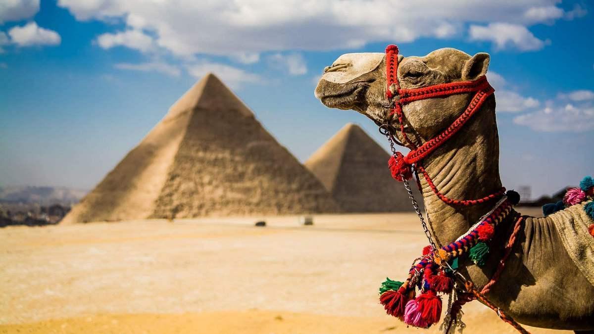Туры в Египет — ждать горящие путевки или нет
