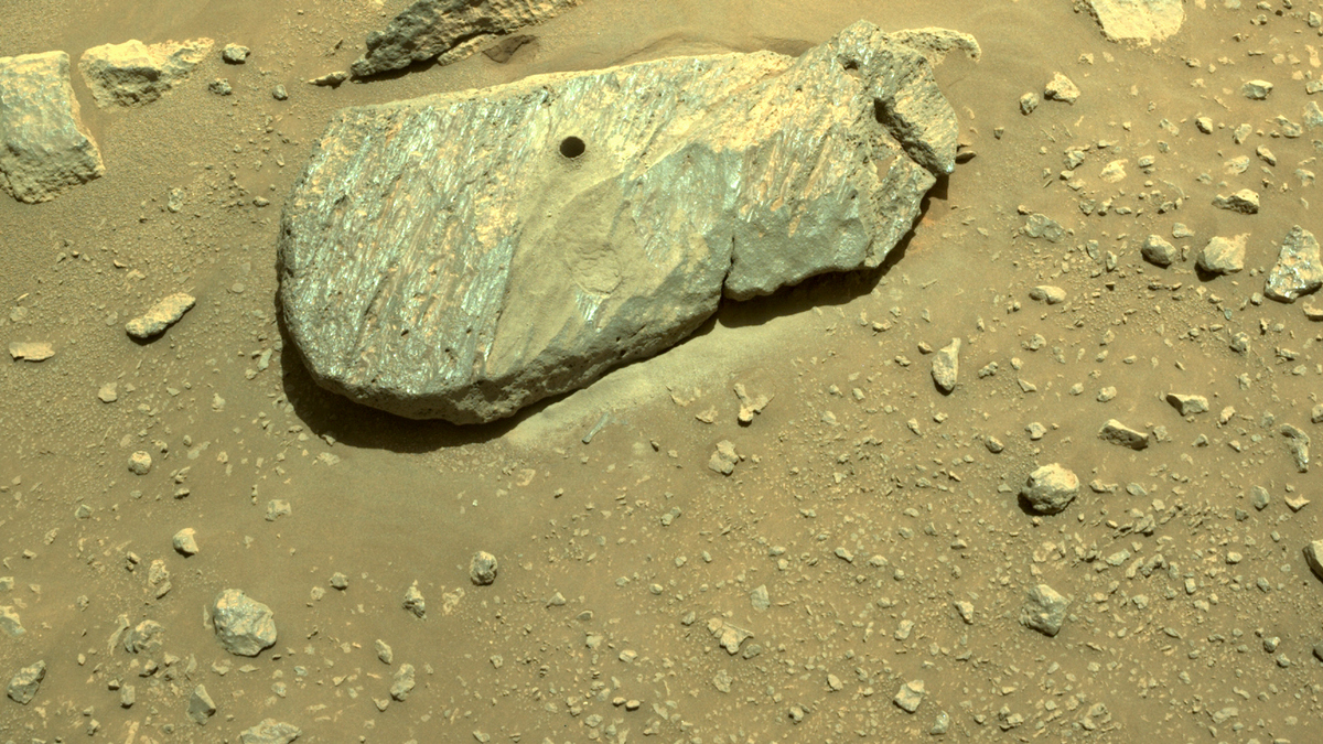 Марсоход Perseverance собрал образцы грунта на Марсе: ученые ищут возможность отправить их на Землю