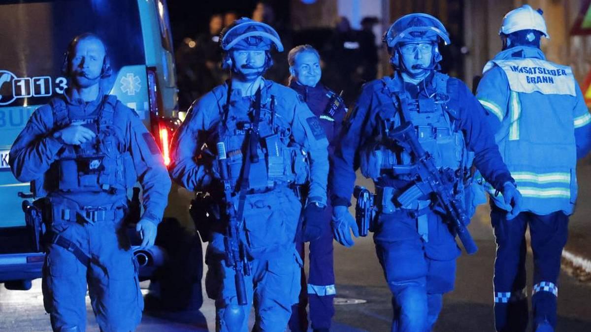 В Норвегии мужчина, вооружённый луком и стрелами, напал на прохожих: погибли 5 человек