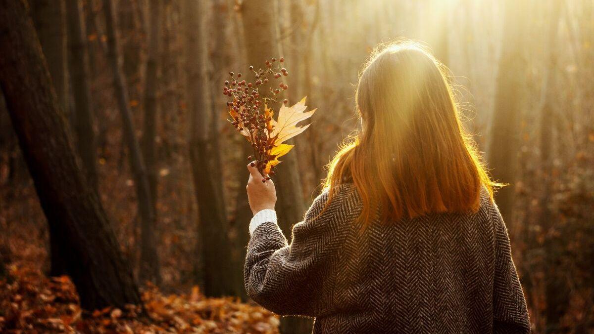 Солнечно и по-осеннему тепло: какой будет погода в Украине 15 октября